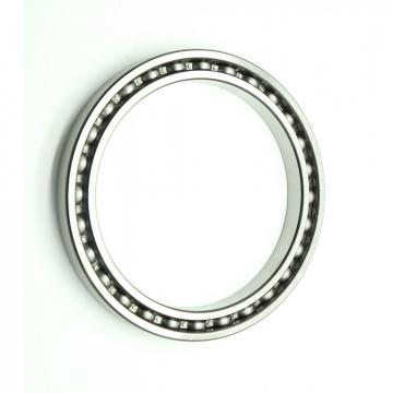 Miniature Deep Groove Ball Bearing High Temperature Bearing 6205 Gcr15 Steel Bearing 11 mm Balls with SKF Brand